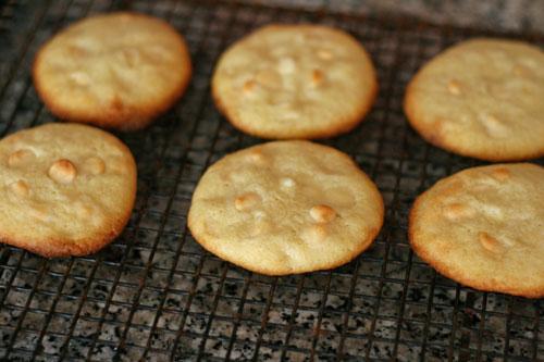 Lime White Chocolate Sugar Cookies Recipe