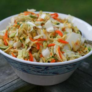 Sesame Soy Napa Cabbage Slaw Recipe