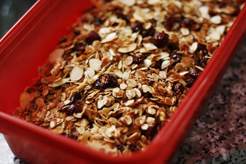 Homemade Cranberry Almond Granola