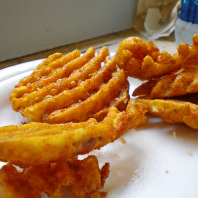 lake zoar fries