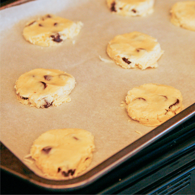 Dark Chocolate Coconut Shortbread Cookies - Sarah's Cucina Bella
