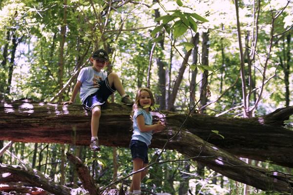 Connecticut Day Trips: Weir Farm