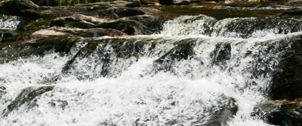 My Favorite Park: Kent Falls State Park