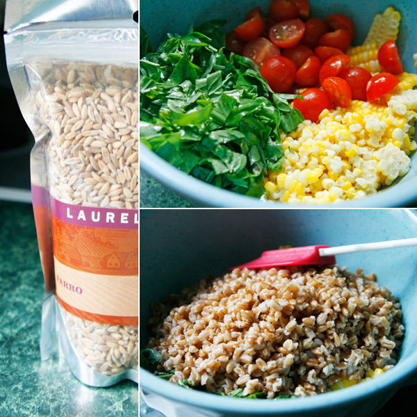 Lemony Farro Salad with Basil and Tomatoes - Sarah's Cucina Bella