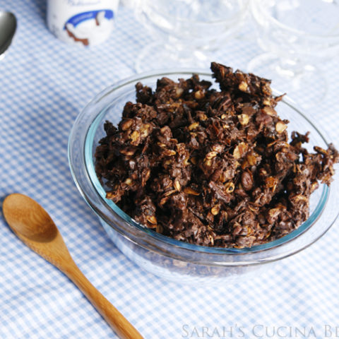 Decadent Chocolate, Toasted Coconut and Pecan Granola