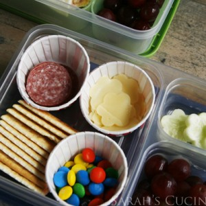 10 Tips for Easy, Fun Bento Style Lunches
