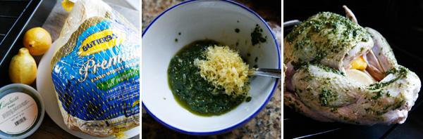 Making Lemon Pesto Turkey