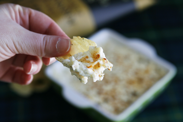Warm Rosemary Ricotta Dip on a Kettle Chip