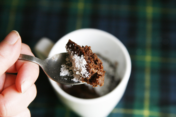Bite of Triple Chocolate Mug Cake