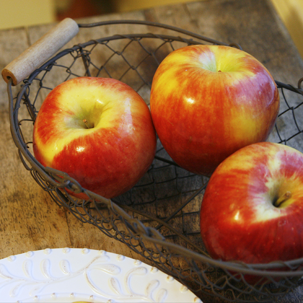 Ambrosia Apples in Basket