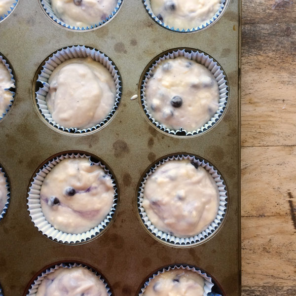 Blueberry Muffins Ready to Bake
