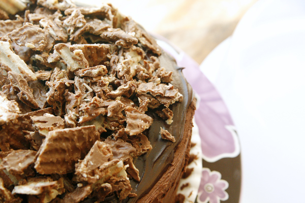 chocolate-overload-cake-top-view