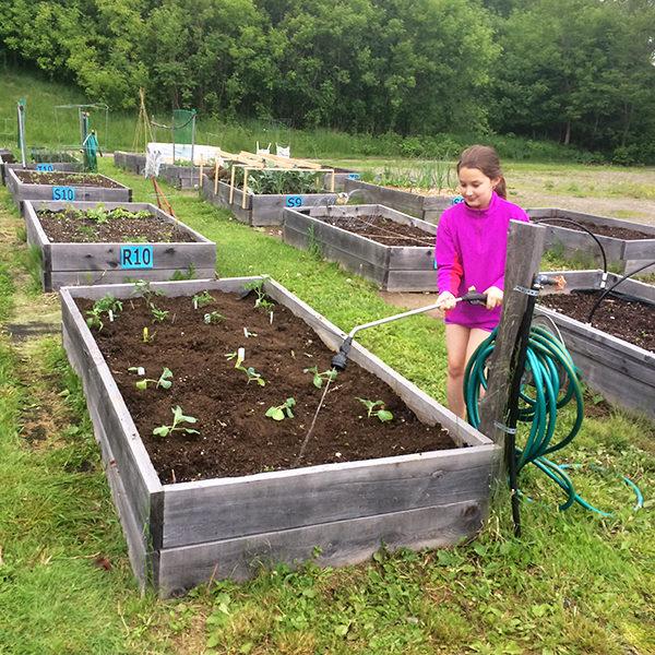 Weekend Farmers' Market Blogging: Week 2