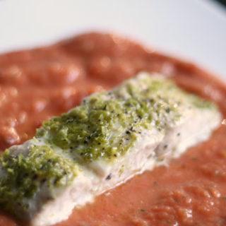Lime Crusted Mahi Mahi on Spicy Tomato Puree