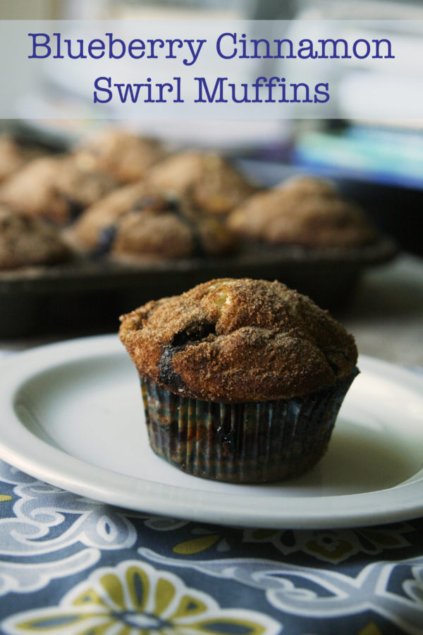 blueberry cinnamon swirl muffins