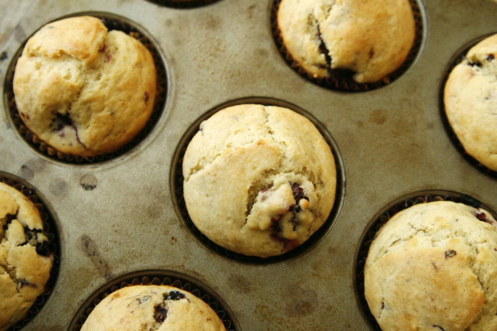 An overhead shot of a muffin pan filled with Blackberry Ginger Muffins.