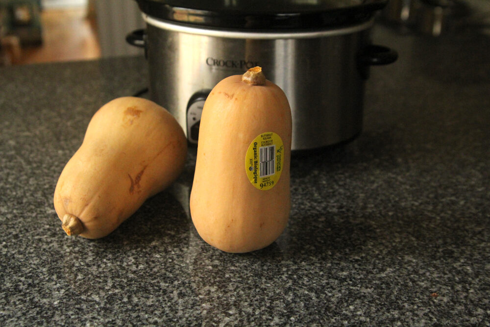 Two small butternut squashes sit on a granite countertop in front of a slow cooker.