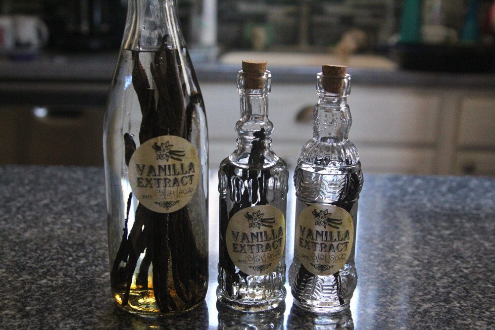 """Three bottles filled with vanilla beans and vodka sit on a counter. The label says """"vanilla extract"""" but the liquid is still clear."""